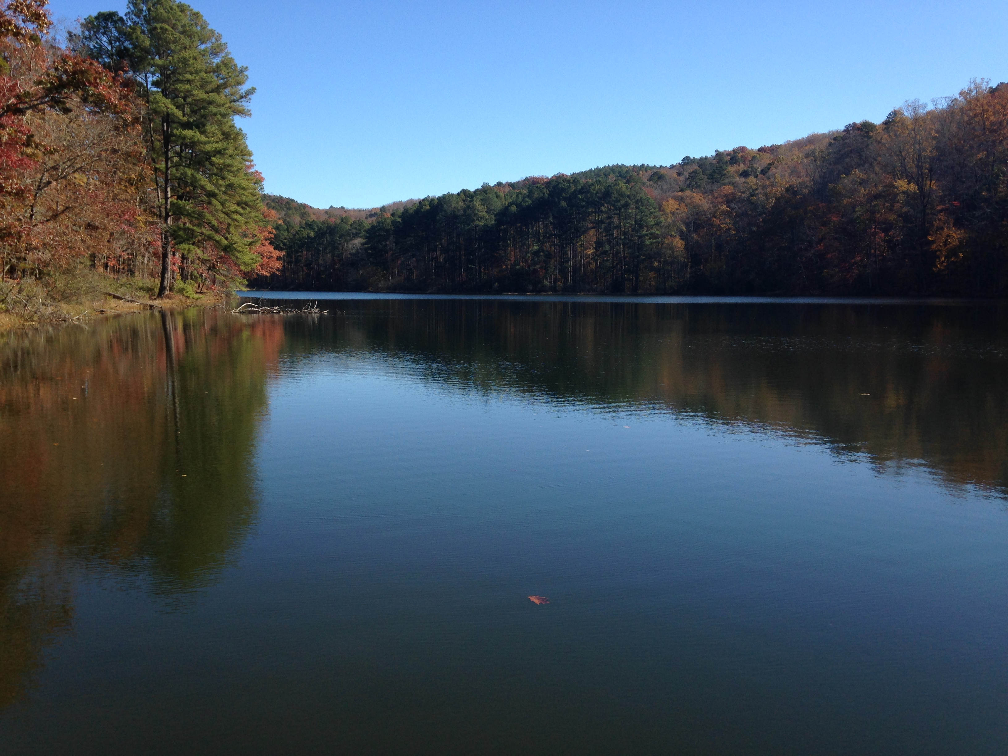 Lake Russell 2