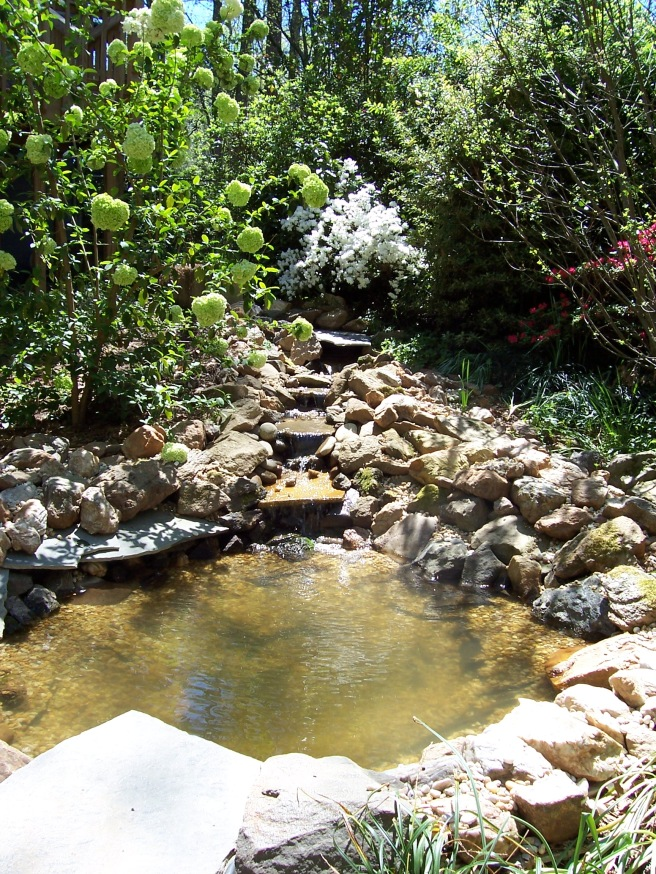First pond 2006