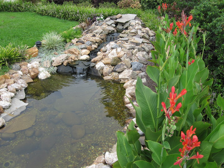 Second pond 2008
