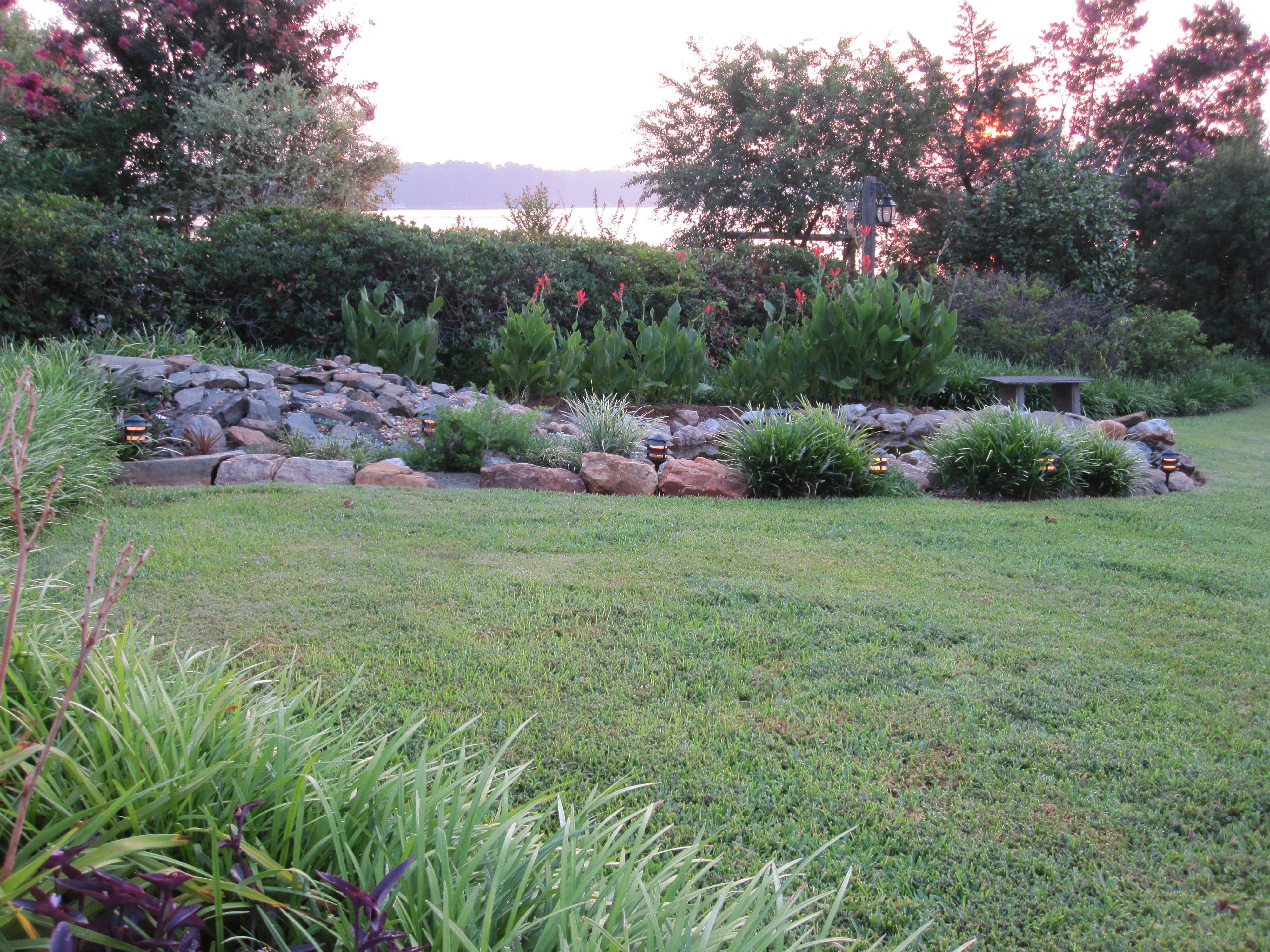 Pond garden at sunrise