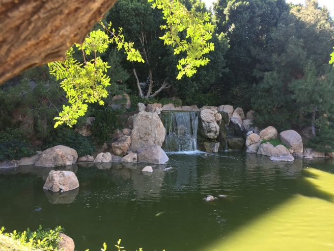 Waterfall at Japanese Friendship Garden in Phoenix, AZ
