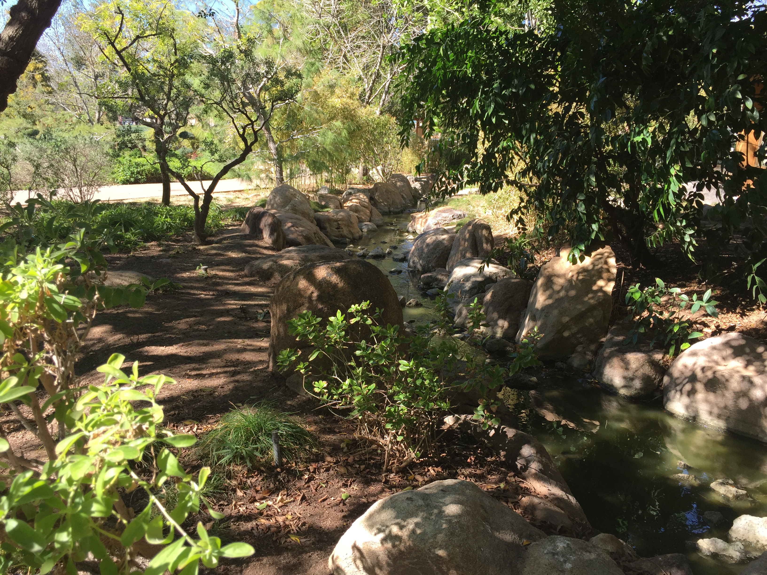 Stream At Japanese Friendship Garden In Phoenix, AZ
