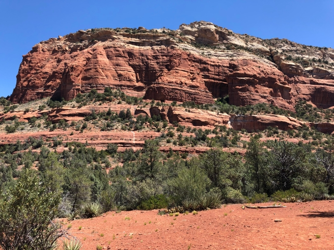 Sedona's red rocks from Devil's Bridge Trail