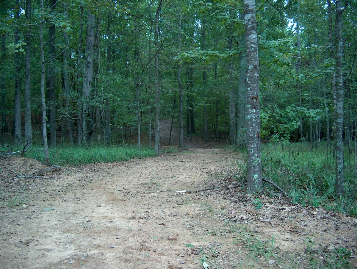 Nature trail at Andalusia