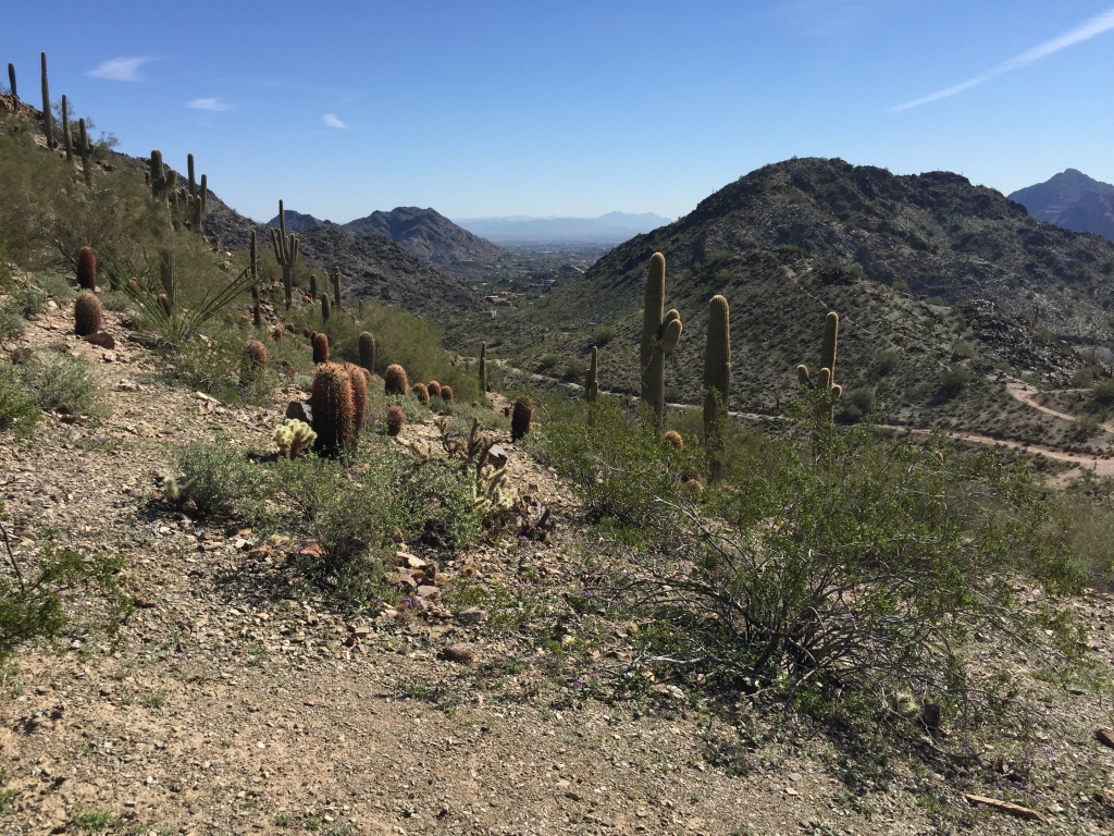 Phoenix Mountain Preserve, Phoenix, Arizona