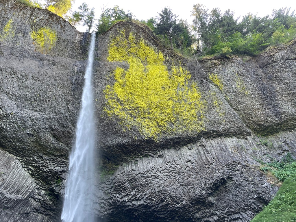 Latourell Falls near Portland, Oregon