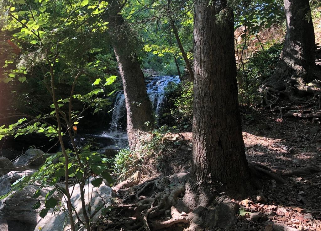 Tanyard Creek near Bella Vista, Arkansas